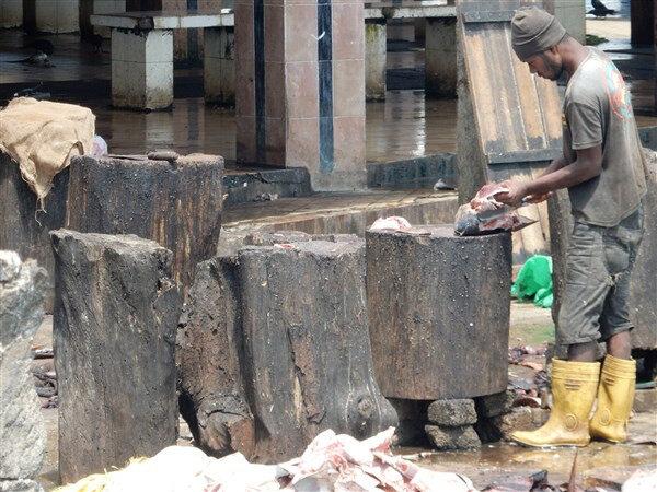 Ne gombo, marché aux poissons (2)