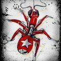 Croquis - Red Ant