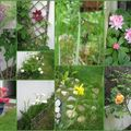 jardin mai 2009