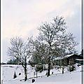 Malbuisson, son lac et ses volatiles, un jour de neige