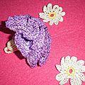 oeuillet violet4