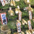 Japon 2010 1481