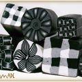 cane noir et blanc
