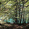 lac-pavin 2 oct 2009 Philippe Bastide