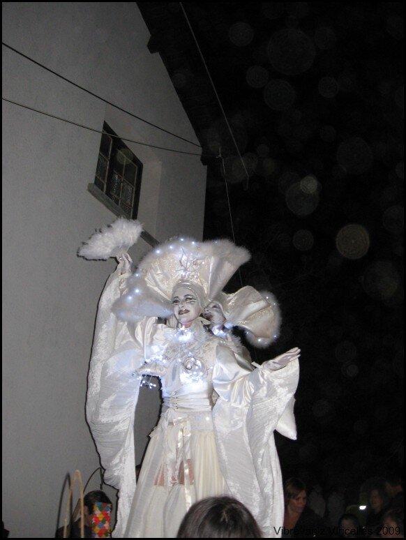 viricelles_2009 (145)