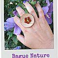 bague bois (B189)