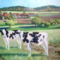 Vaches à villars-bramard