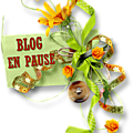 Le blog or