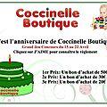 Coccinelle Boutique, Le Blog