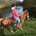 Balade à cheval dans la forêt P1080250