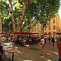 Noix de Galle, Maison Vacances Luberon