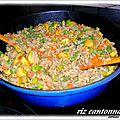 Riz cantonnais au riz complet à poeler et au colombo de poulet
