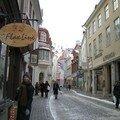 Estonia エストニャ 2006/07
