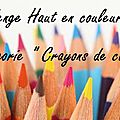 Challenge - haut en couleurs