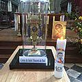 Pèlerinage de la relique du cœur de saint vincent de paul