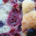 Cake aux fruits rouges