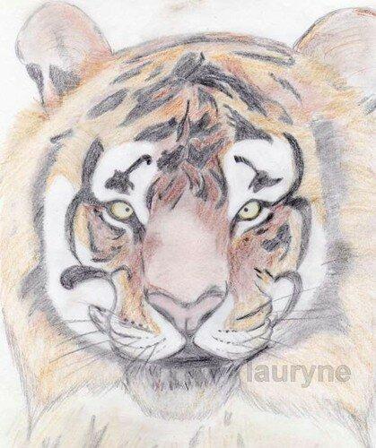 tigrla