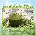 Le jus d'herbe d'orge : la cure de vitalité