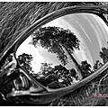 004-lunettes