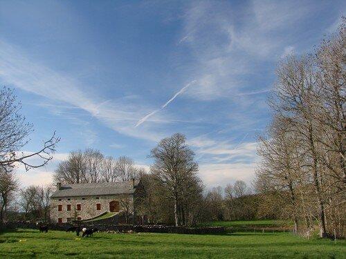 2008 04 27 Ciel plein de cirrus et la l'herbe commence à poussé