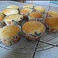 Muffins noix de coco et pépites de chocolat
