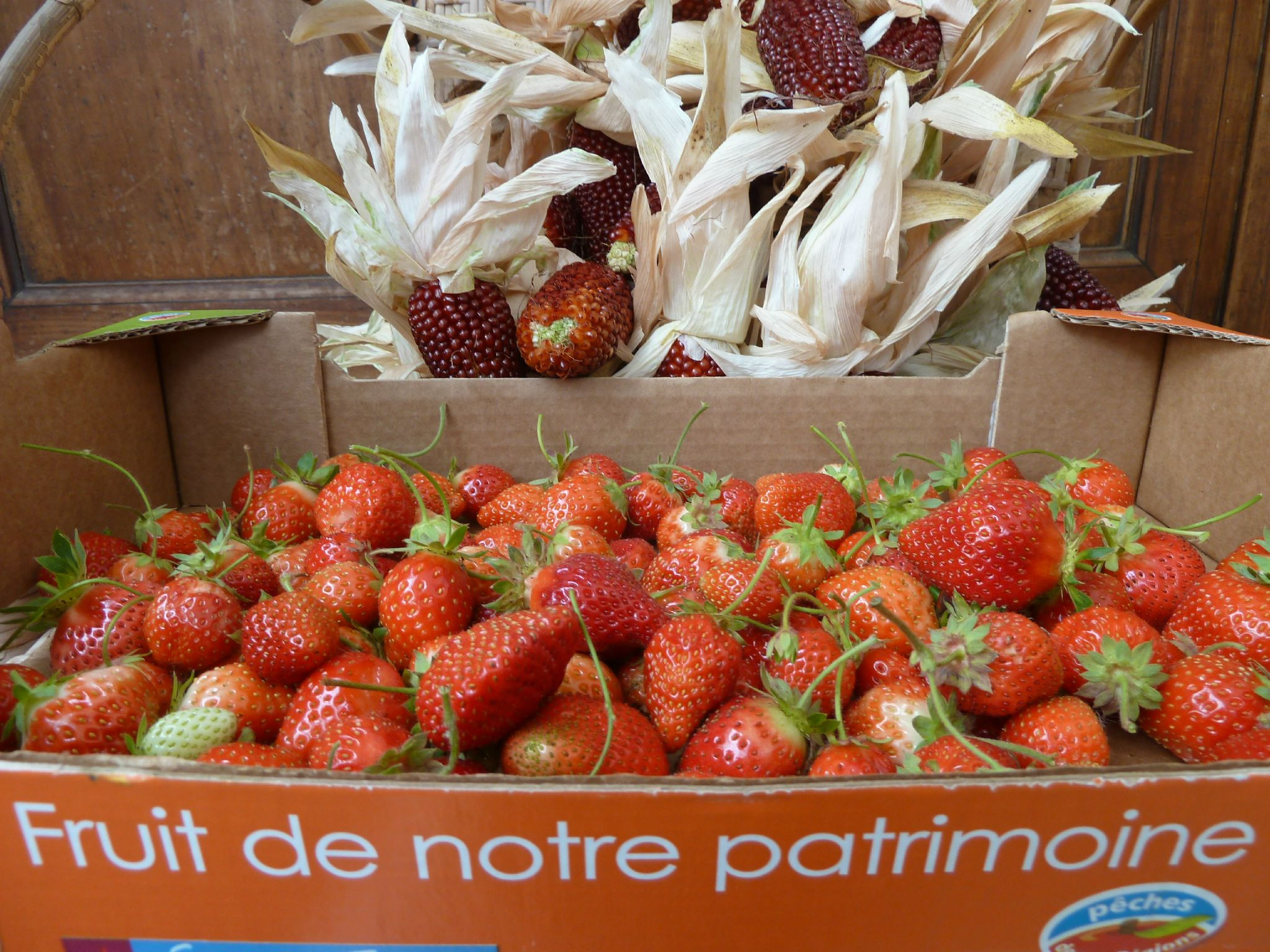 fraises de septembre - www.passionpotager.canalblog.com