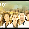 Saison 3 – Épisode 20 : <b>Grey</b>'<b>s</b> <b>Anatomy</b>