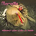 <b>Little</b> <b>Merveille</b> by Hélène