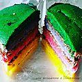 Le <b>rainbow</b> cake à peu près, facile