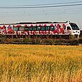 JR 2000系 Anpaman Densha, Seto Ohashi line