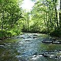 Elle n'étreint pas l'eau de la rivière qui s'allonge et s'étire