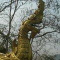 Dragon, temple LP