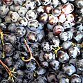 Cure de <b>raisin</b>
