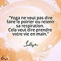 Séances de Hatha <b>Yoga</b>