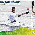 Farineaux martin