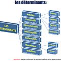 Français - Grammaire : le <b>déterminant</b>