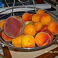 Confiture pêche et abricot