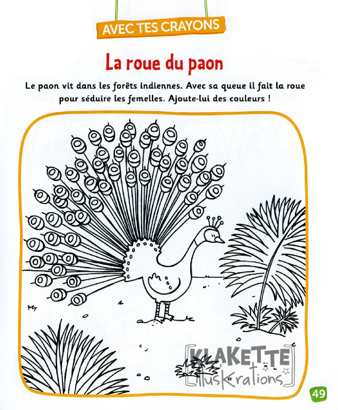 Coloriage - Paon