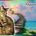 Moumoune