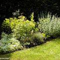 Massif triangulaire, coin ombragé du jardin