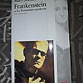 Frankenstein ou Le Prométhée morderne