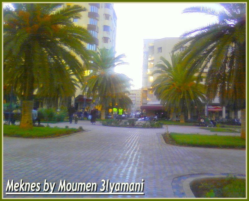 Meknes Hamria 15