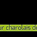 ✿⊱╮eric pineau { éleveur charolais depuis 1988 }