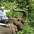 treck eleph P1190339