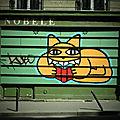 Mr chat en pleine lecture a la librairie de nobele