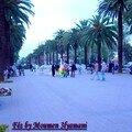 Boulvard Hassan II Fés