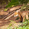 2014-05-30 LUX-1095