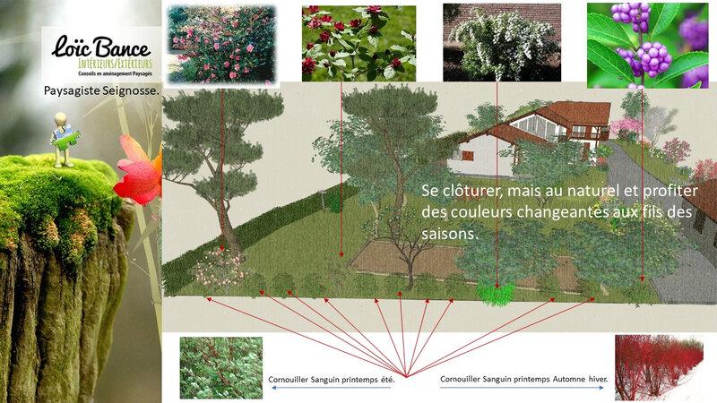Paysagiste-seignosse-extension-maison-individuelle-et-aménagement-paysager-seignosse-7
