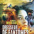 <b>Dresseur</b> de fantômes, de Camille Brissot