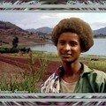 lac Hayk, Weldiya, Éthiopie